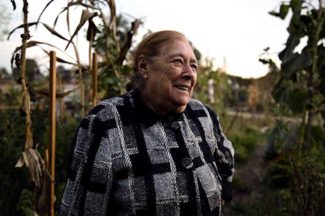 "86-year-old Doña(madam) Marina Gonzalez attends the Farming for Health meetings nearly every week. She's benefited from allergy remedies and has become close with various members of the group. Many of them refer to her as the ""Abuelita"" (endearing term for grandma) of the group."
